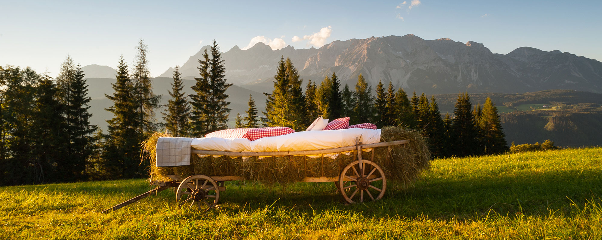 Spend a night in the hay cart, the special